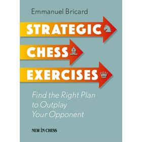 Strategic Chess Exercises